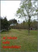 Miniatures des photographies suivantes